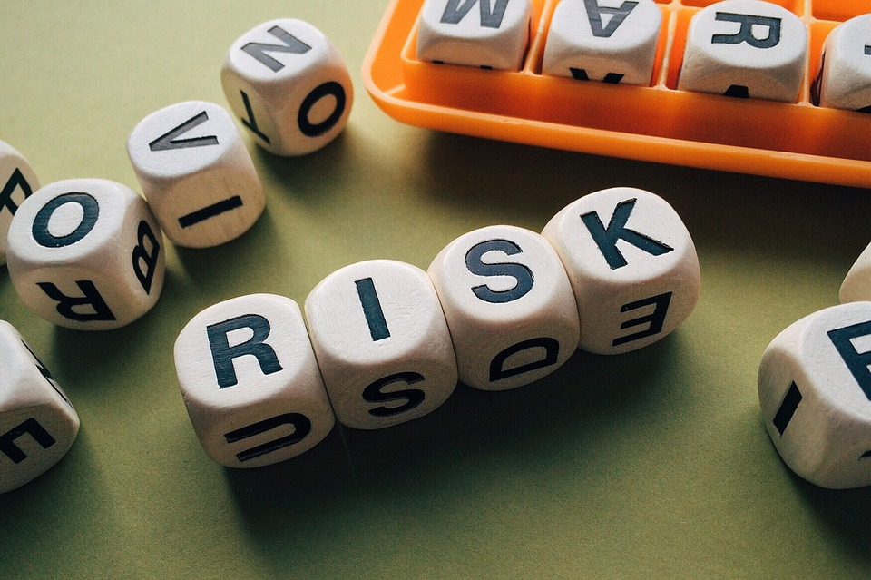 Risk Management in Healthcare IT